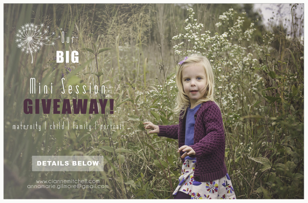 MiniSession-Giveaway2015