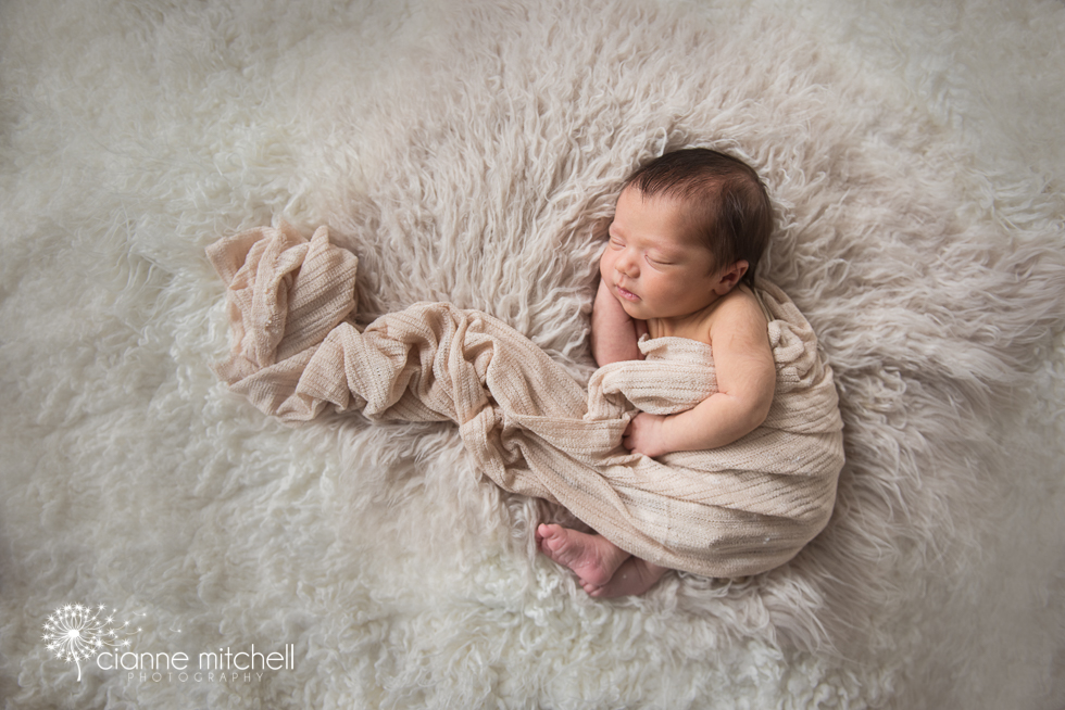 Beautiful Newborn portrait with large flow wrap